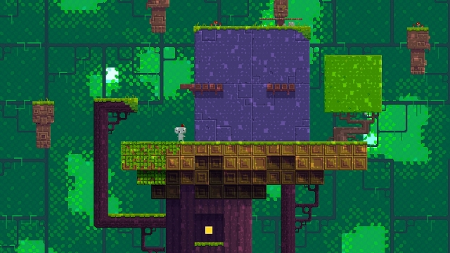 Fez Forest