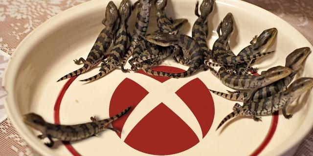 Lizard Squad Xbox Live DDoS Attack