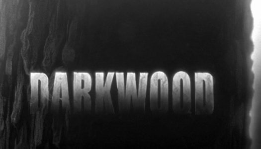 Darkwood Review: Unforgiving Not Forgiven